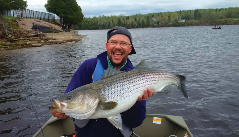 //content.osgnetworks.tv/flyfisherman/content/photos/Paul-Elson-Miramichi-Stripped-Bass.jpg