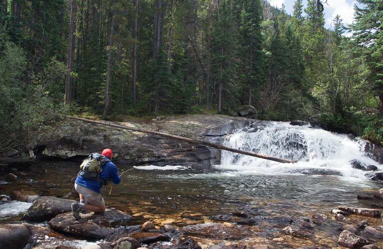 //content.osgnetworks.tv/flyfisherman/content/photos/Reading-the-Water-in-Small-Streams.jpg