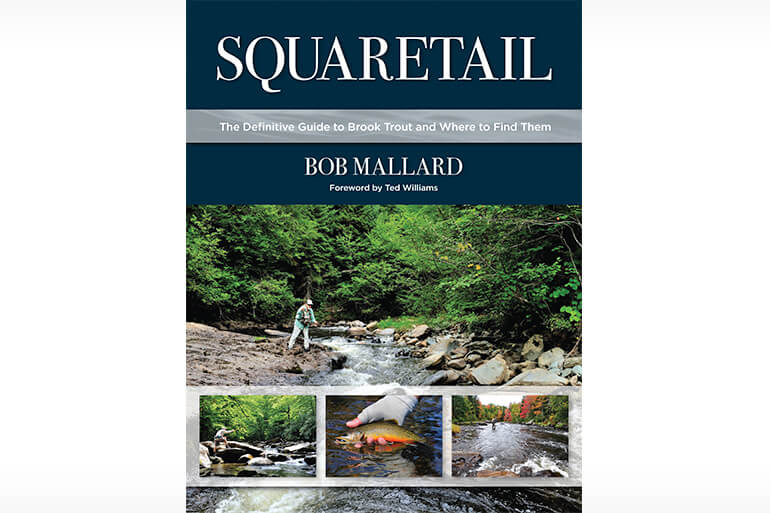 Squaretail would make a welcome and visually striking addition to any angling library.