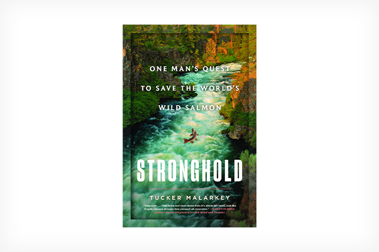 Stronghold is first and foremost a story of adventure, danger, and intrigue.