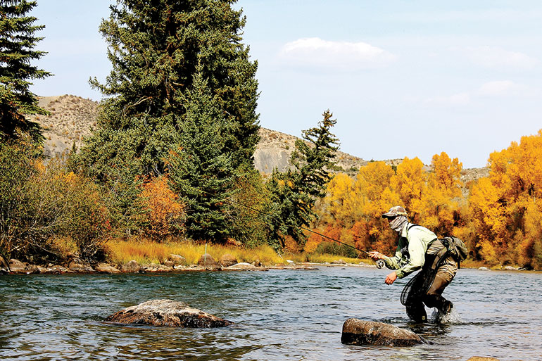 4 Unconventional Competition Fly-Fishing Rigs