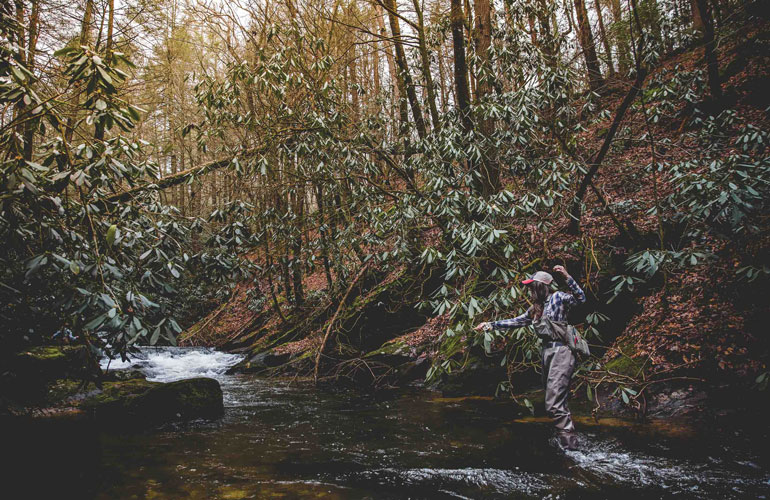 //content.osgnetworks.tv/flyfisherman/content/photos/Where-to-Fish-for-Trout-in-Streams.jpg