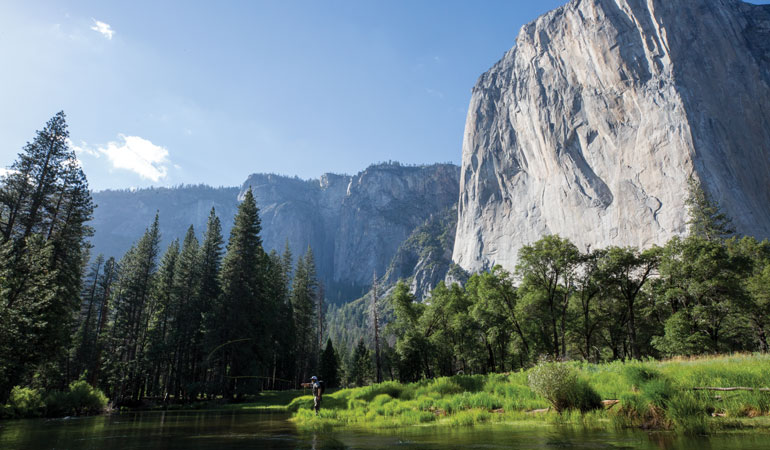 The Yosemite Boogeyman
