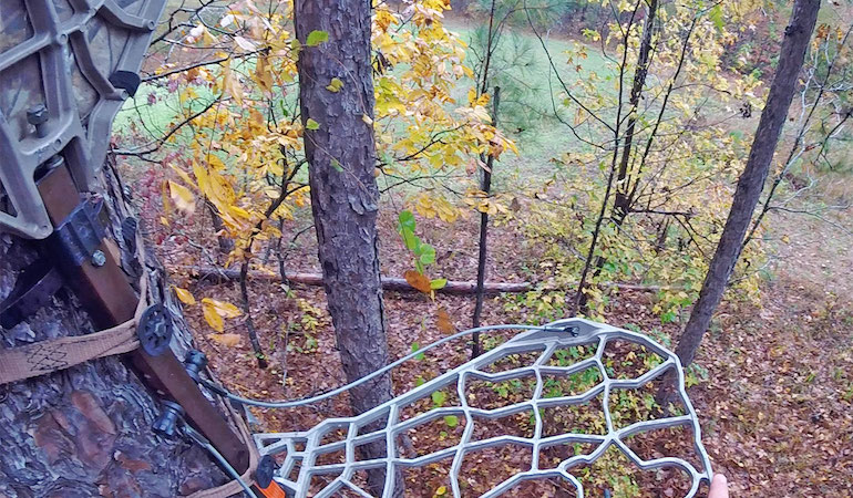 Deer Hunting: How to Execute a Spot Set