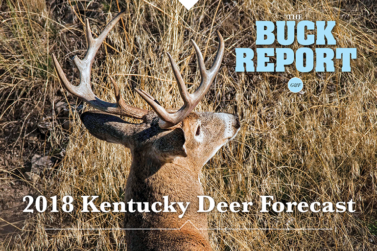 This detailed analysis of the Kentucky deer picture will give you a realistic view of your 2018 hunting prospects.
