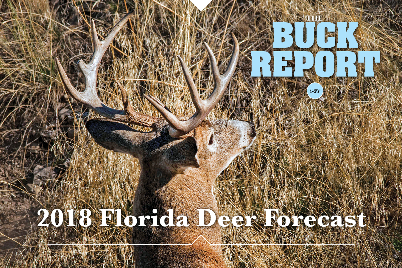 2018 Florida Deer Forecast