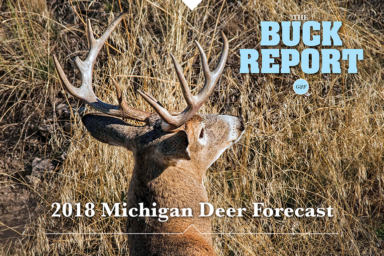 This detailed analysis of the Michigan deer picture will give you a realistic view of your 2018 hunting prospects.