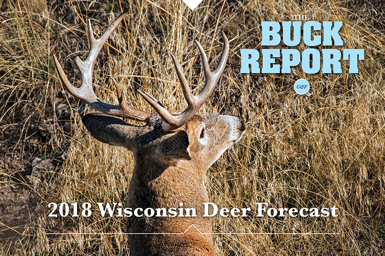 This detailed analysis of the Wisconsin deer picture will give you a realistic view of your 2018 hunting prospects.