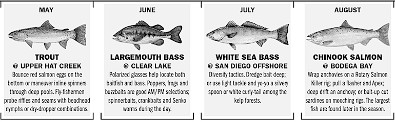 California Fishing Calendar 2019