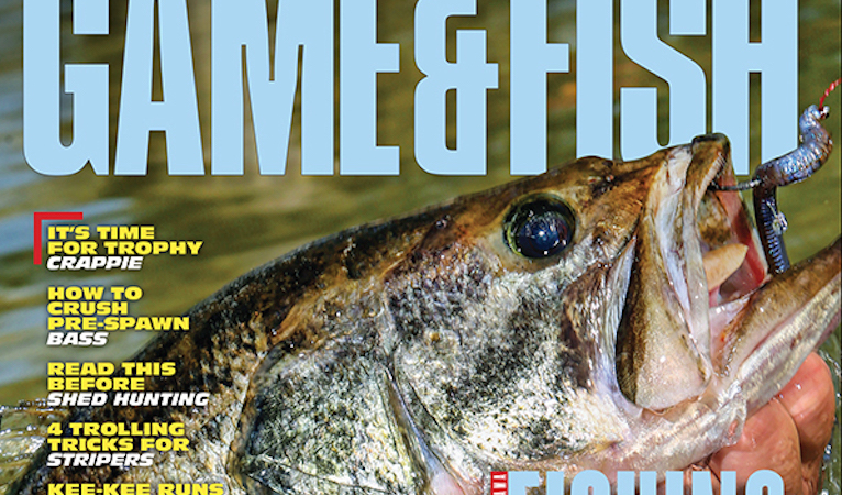 Check out what's inside the February issue of Game & Fish Magazine.
