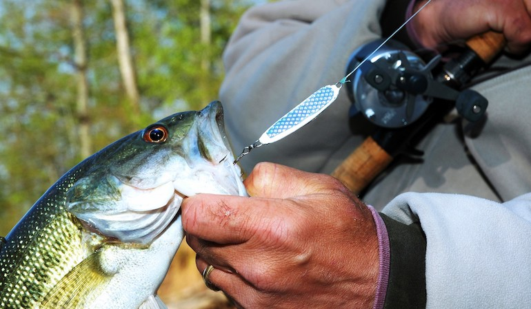Vertical jigging spoons let anglers get the drop on big fish.