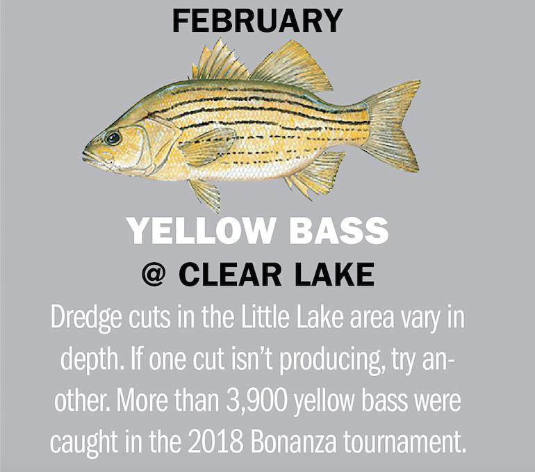 Iowa Fishing Calendar 2019