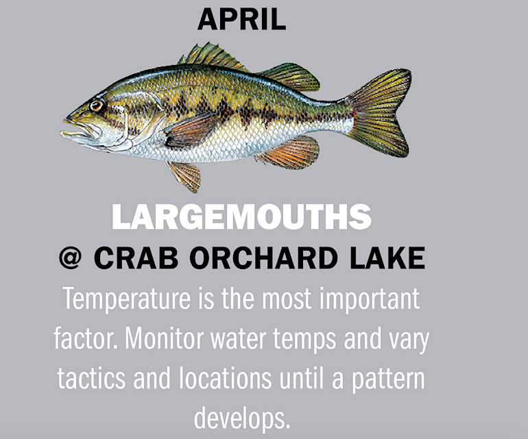 Illinois Fishing Calendar 2019