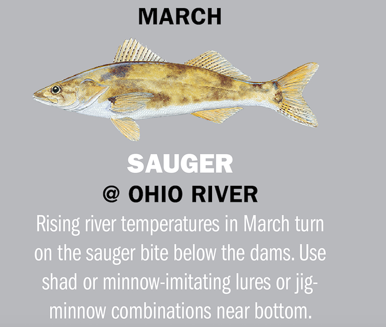 Indiana Fishing Calendar 2019
