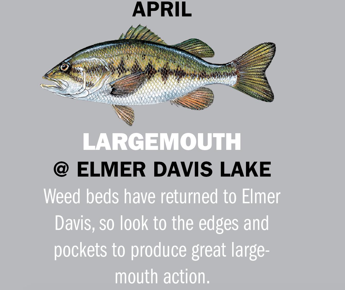 Kentucky Fishing Calendar 2019