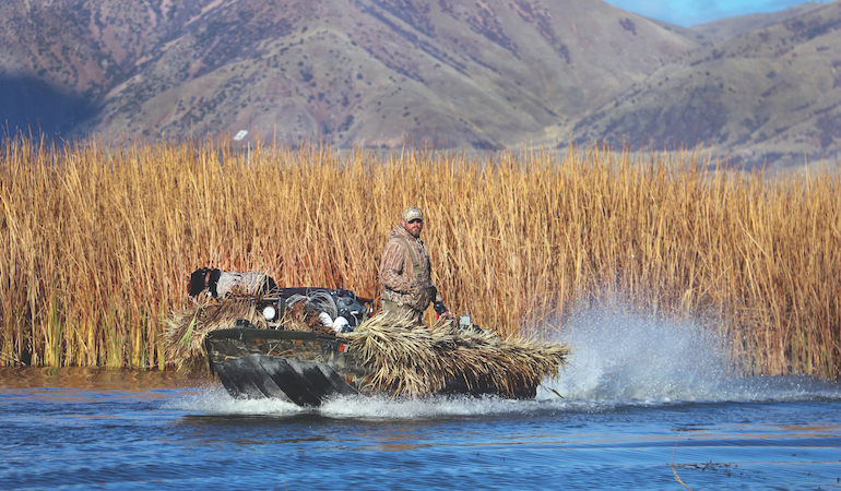 Western Game Birds Galore: Duck, Turkey, Chukar & More
