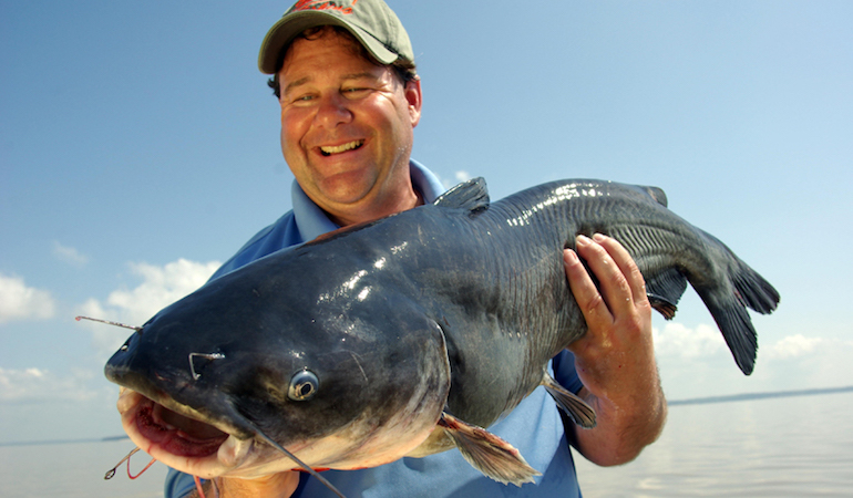 Drift-fishing with multiple poles and baited lines can help quickly narrow the search for huge blue catfish.