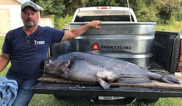 It's the first record blue certified over 100 pounds in the Peach State.