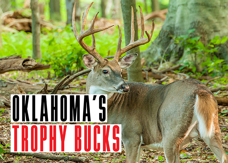 Every deer season, Oklahoma hunters take some trophy bucks. Here are the stories behind three from last season.