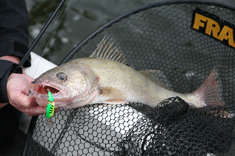 Here's a month-by-month look at the best fishing hotspots this year in Wisconsin.