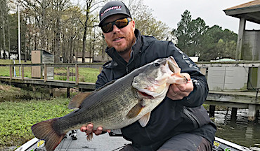 Here's how to take it one step further and actually catch bass.