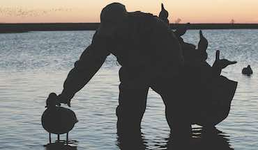 Lake Erie and its onshore marshes offer potential for big smallies and wondrous waterfowling.