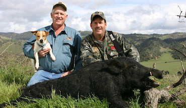 Hogs aren't everywhere in California. You have to be where they are to hunt them successfully.