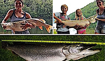 A family kayak fishing trip to get out of the house nets huge pike.