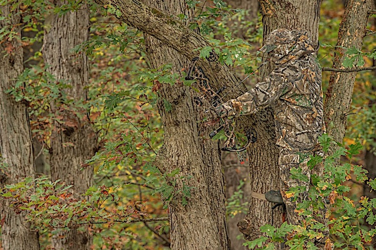 Going 'Soft' on Whitetails
