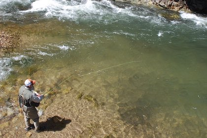 While neighboring states have spring openers, trout season is pretty much open year-round in the Old Dominion.