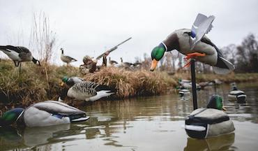 From dabblers to divers, there's an Avian-X Topflight decoy for every duck hunter.