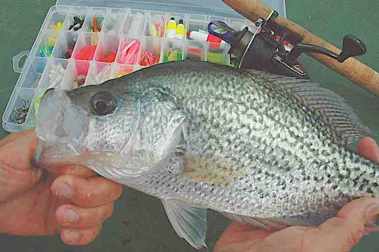 There is no single magic bullet for managing up-and-down crappie populations.