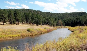 The South Platte offers some of the most technical trout fishing in the country—and a legitimate shot at the best brown trout of your life.