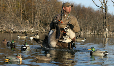 Small, mixed decoy spreads are realistic and easy to set.
