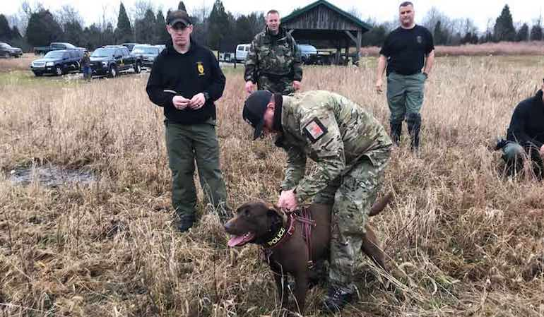 Here's a look at recent cases conservation officers faced in the field.