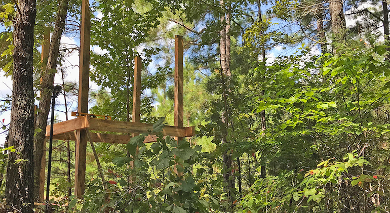 How to Build Elevated Deer Blinds On A Budget