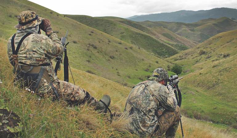 Summer is prime time to get after aggressive coyotes. Try these tactics for consistent success.