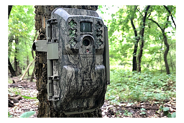 The Moultrie XA-6000 is cost-effective cellular trail camera solution for those needing or wanting to do remote deer scouting.