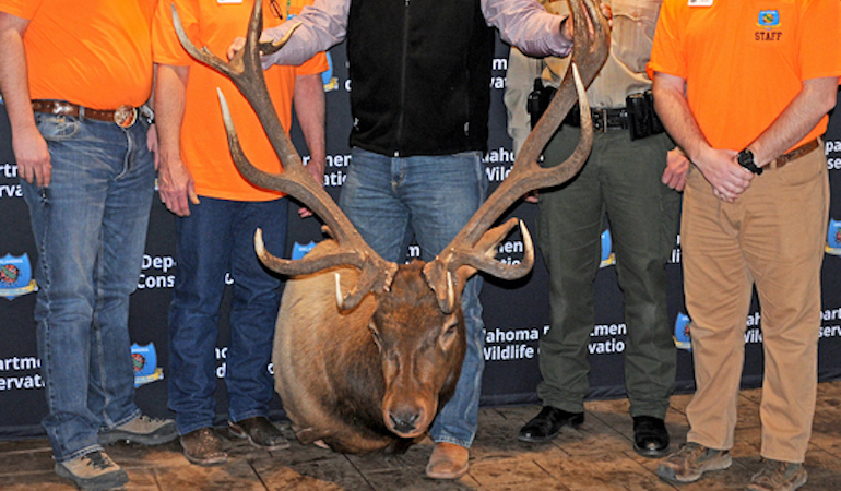 Dewey County bull shattered the state's previous archery non-typical elk record by 21 inches.