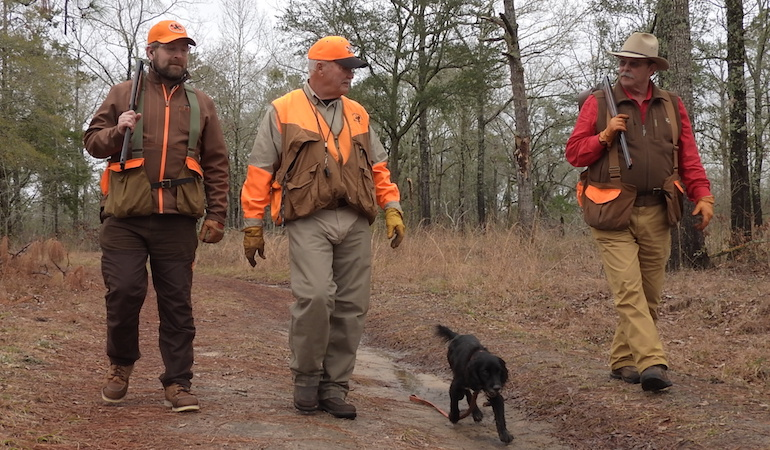 Plantation hunts in the Quail Capital with 'The Finest Gun in the World.'