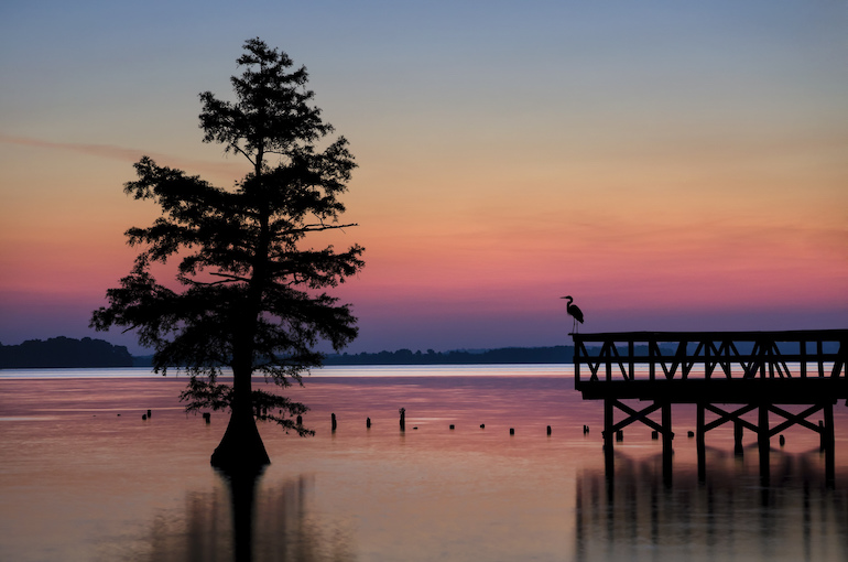 Reelfoot-Lake