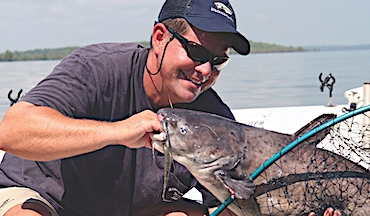 Slow trolling cut catfish baits can lead to dramatically more bites than still-fishing over an anchor.