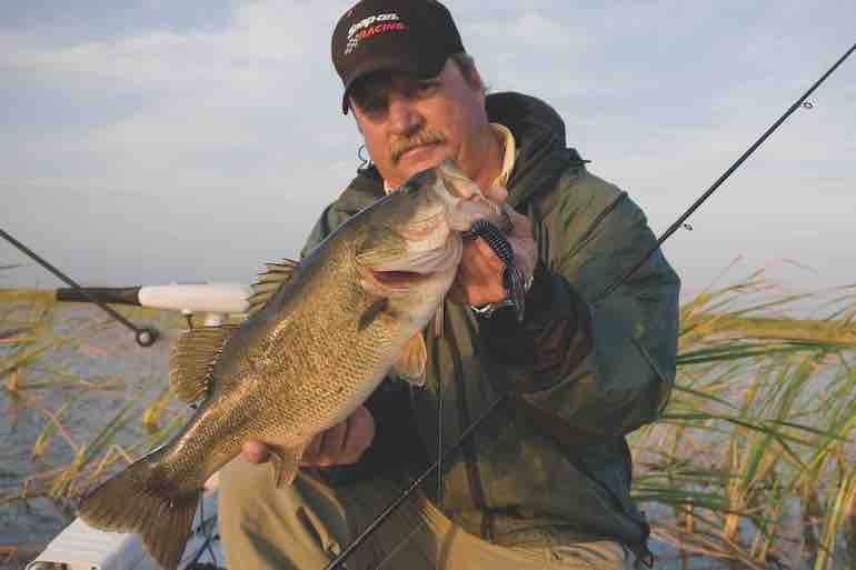 Tailor tactics to bass behavior and you'll catch more fish during the spawn.