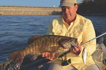 At Tennessee's Pickwick Lake, live-baiting for bass is the name of the game.