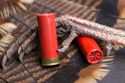 If you're looking to get the lead of your turkey hunting, consider these non-toxic options.