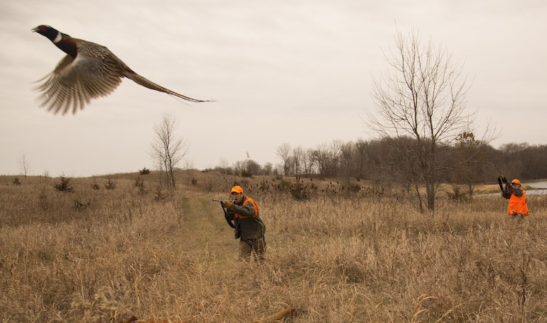 Modern gear that's changing the game for quail, grouse, pheasant, dove.