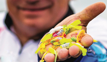 Wally Marshall helps you learn this technique to quickly fill your crappie limit.
