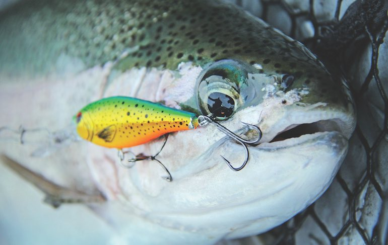 Western Trout: Make the River Deliver