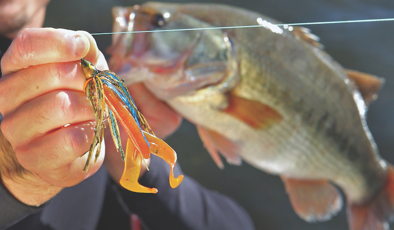 Jigs are universally great baits for any number of water conditions, as they present a large profile and tantalizing action.