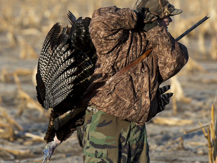 Things have been tough on Peach State turkey hunters, but 2019 may be a turnaround.